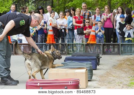 Sniffer Dog Show