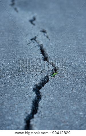 Long Crack In The Road