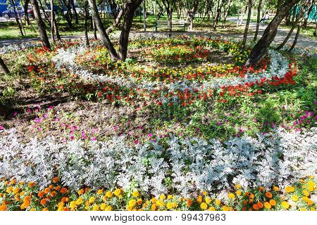 Round Flowerbed With Dianthus And Jacobaea Plant