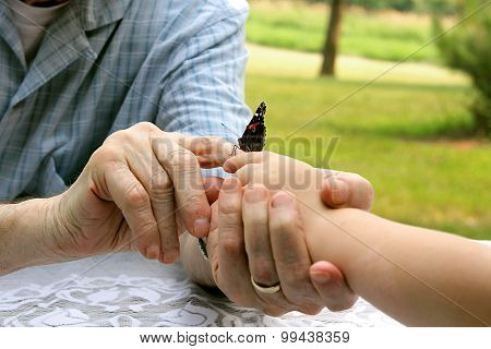 Grandpa's Hands Giving Butterfly To Child