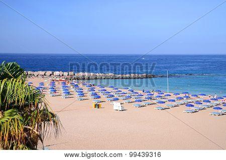 Beautiful Playa de las Vistas in Los Cristianos on Tenerife, Spain poster