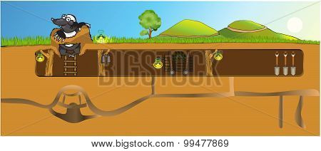 Cute Mole and his burrow with all the amenities. poster