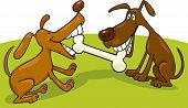 cartoon illustration of two dogs playing with bone poster