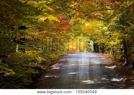 Beautiful empty road during the autumn in New England