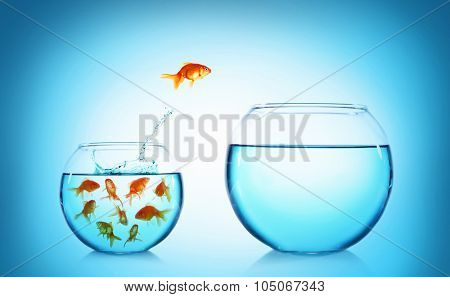 Goldfish jumping from glass aquarium, on blue background