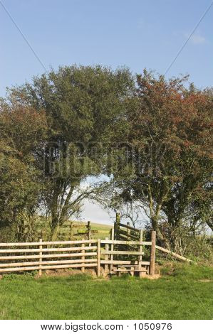 Country Stile