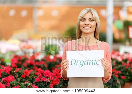 Agreeable florist holding folder