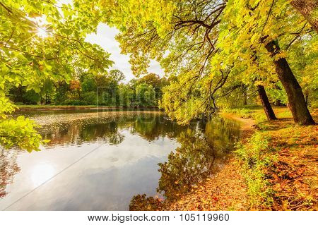 Saint Petersburg/Russia - October 09, 2015: Beautiful Autumn Park On Yelagin Island