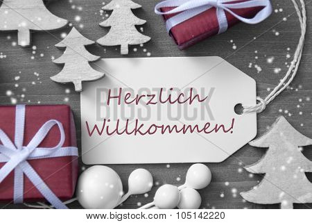 Christmas Label Gift Snowflakes Herzlich Willkommen Mean Welcome