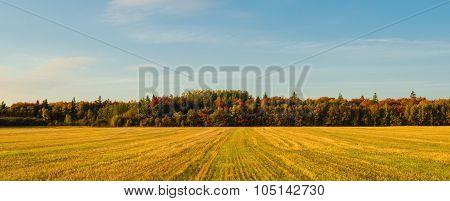 Panorama Of Pei Rural Scene At Fall