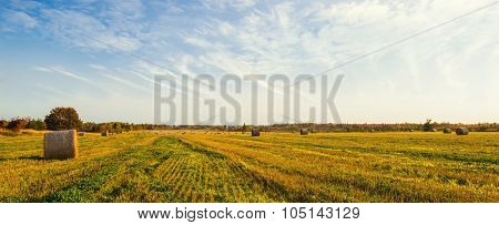 Panorama Of Scenic View Of Hay Stacks At Fall