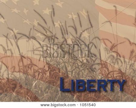 Liberty In America
