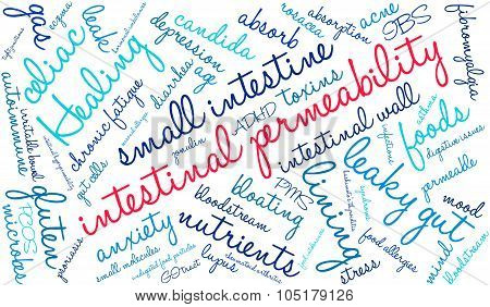 Intestinal Permeability Word Cloud