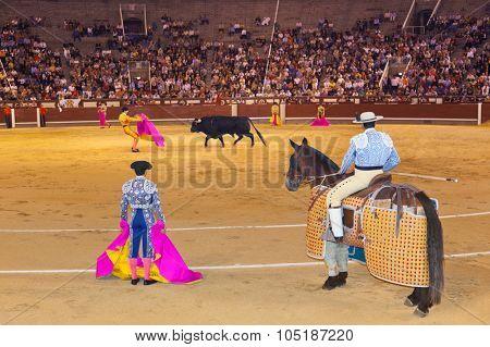 MADRID, SPAIN - SEPTEMBER 18: Matador and bull in bullfight on September 18, 2011 in Madrid, Spain.