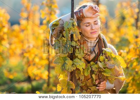 Relaxed Woman Winegrower Standing In Vineyard Outdoors In Autumn