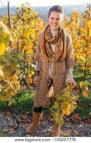 Portrait Of Woman Winegrower Standing In Autumn Grape Field