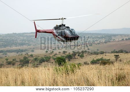 Helicopter Used To Dart Animals From Air