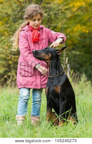 Beautiful little girl is walking with a dobermann in autumn park.