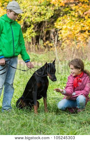 Brother and his sister are feeding the dobermann in the park.