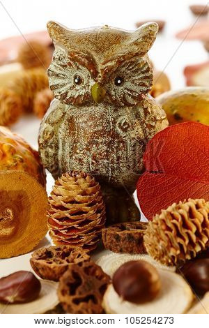 Autumn decoration with owl and autumn fruits, pineal and chestnut.