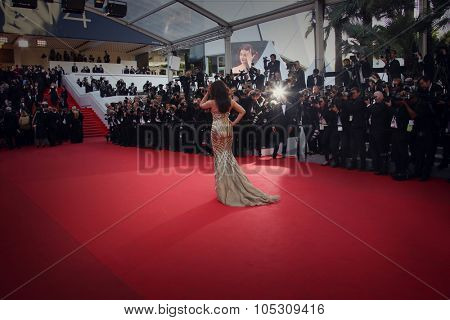 CANNES, FRANCE - MAY 21: Aishwarya Rai attends 'The Search' premiere during the 67th Annual Cannes Film Festival on May 21, 2014 in Cannes, France.