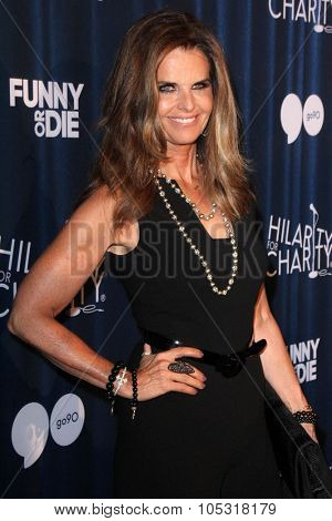 LOS ANGELES - OCT 17:  Maria Shriver at the Hilarity for Charity`s James Franco`s Bar Mitzvah at the Hollywood Paladium on October 17, 2015 in Los Angeles, CA