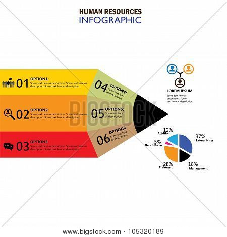 Human Resources Concept Infographic Vector On White Background