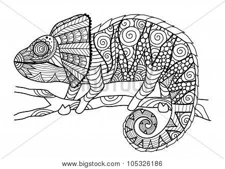 Chameleon Coloring Book