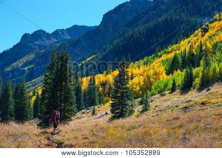 Hiker Backpacker Colorado Fall Foliage Colors