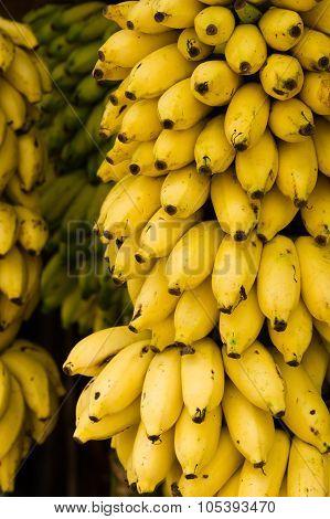 Closeup Of Ripe Yellow Bananas