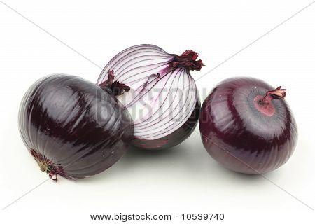 Purple Onion on white background