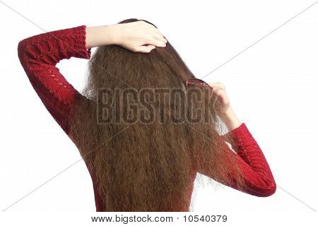 Combing hair. Woman back with comb combing her brown unruly hair. poster