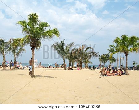 North Avenue beach in summer dress
