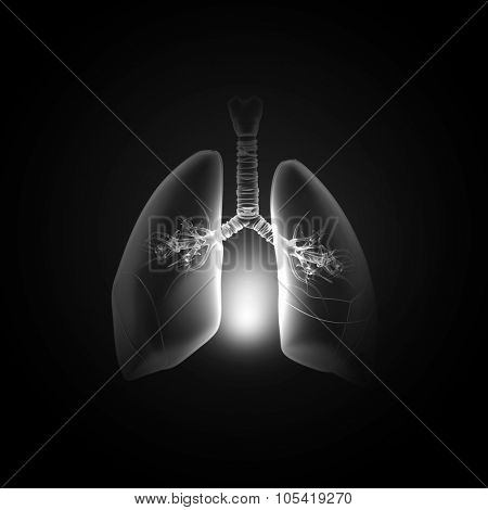 Male hand pointing on lung radiography on dark background