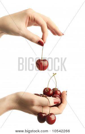 Hands With Cherries
