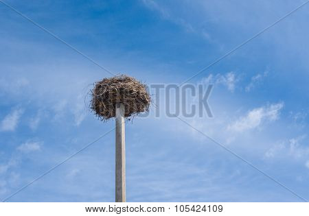 White stork nest on a pillar