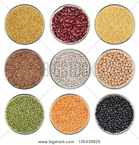 Set Of Beans Isolated On White Background