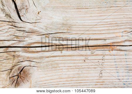Wood Knaggy Texture Close Up