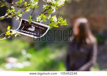 Ultrasound picture and parents