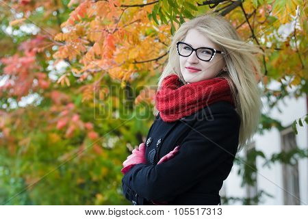 Blonde young woman with waving hair wearing cat eye glasses posing at red autumn foliage background