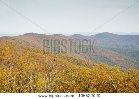 Talimena scenic byway running along the crest of the mountain in Ouacahita National Forest