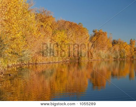 Gold Reflections And Blue Lake