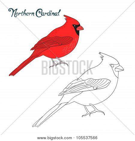Educational game coloring book cardinal bird