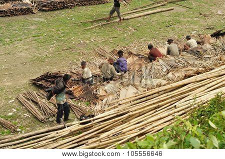 Hard Work In Nagaland, India