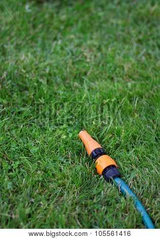 The Garden Water Hose Laying On The Green Grass