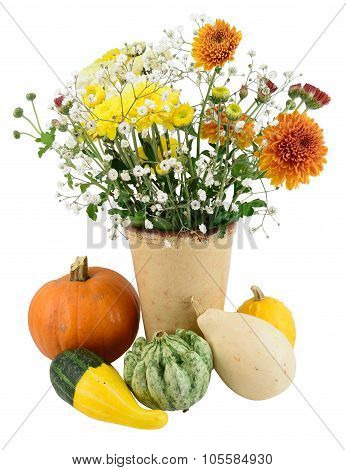 Autumn Blooms And Pumpkins