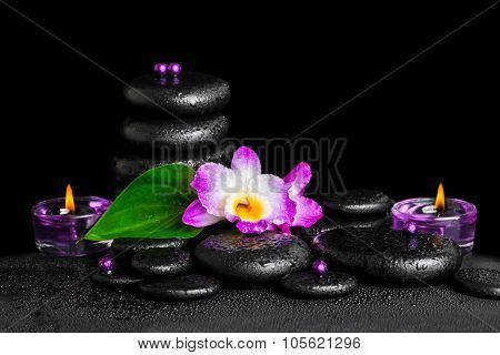 Beautiful Spa Concept Of Purple Orchid Dendrobium With Dew, Pyramid Black Zen Stone, Green Leaf, Bea