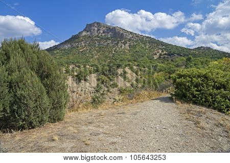 Foothills Of The Mountain. Crimea.