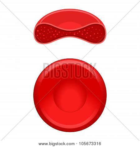 Red blood cell erythrocyte vector illustration
