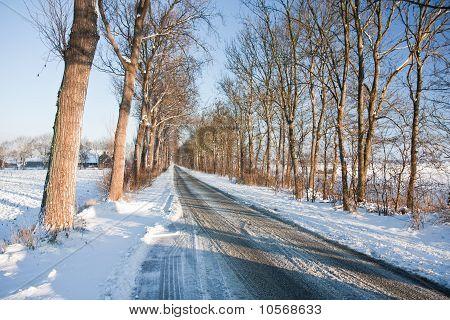 Slippery Road In Frozen Dutch Farmland